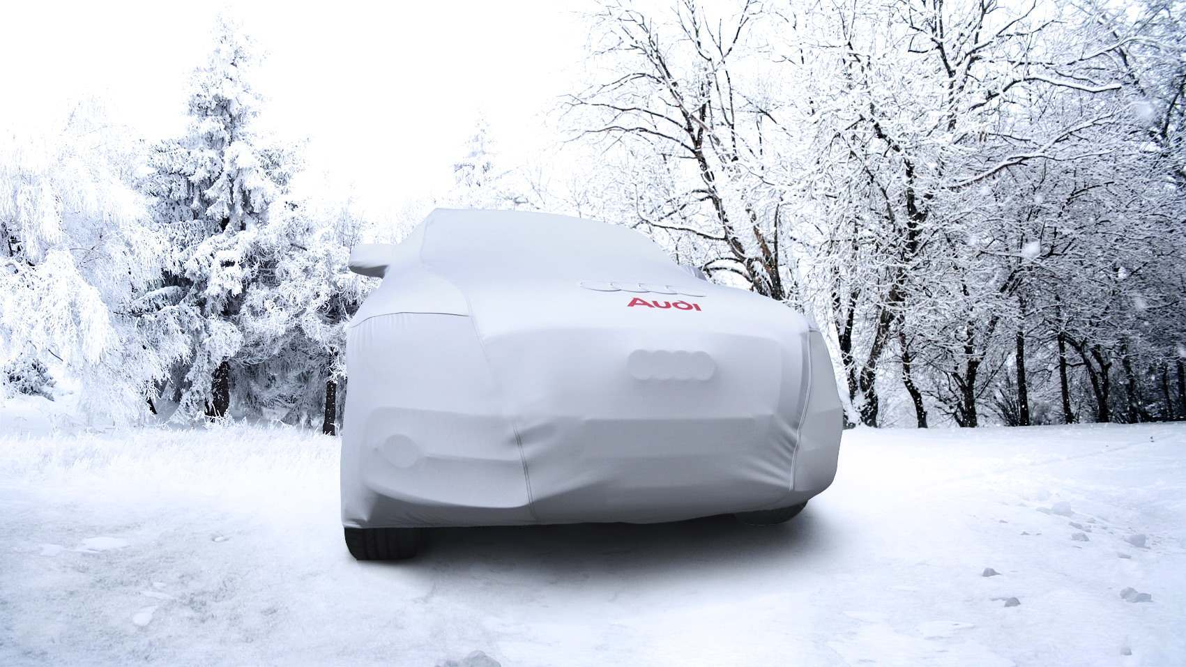 Winter Audi